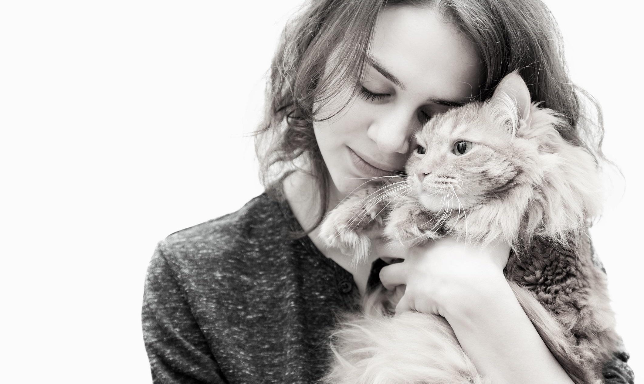 Kedi sahibi olmak sağlığımıza iyi geliyor