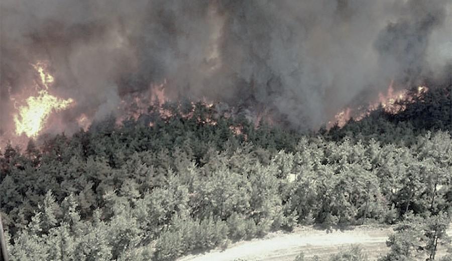Gelibolu Yarımadası'nda orman yangını: 300 hektara yakın bir alanı kaybettik