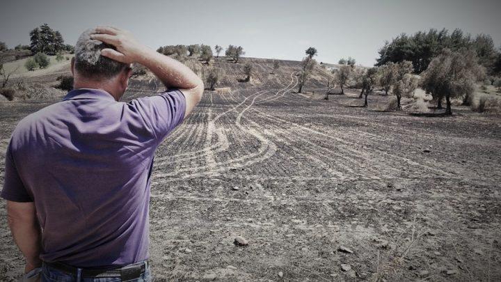 Gelibolu'yu yangından sonra bekleyen ikinci tehlike! Dereler temizlenmezse köyler ve tarlalar sular altında kalabilir